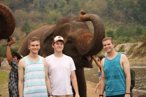 My cousin Scott, brother Darryl and I posing with some elephants.