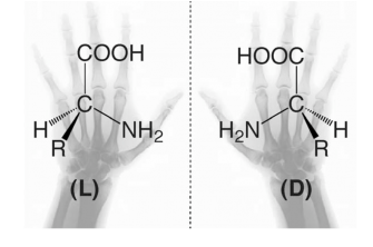 "Enantiomers are often said to be ""left"" or ""right- handed"" indication the D or L configuration."